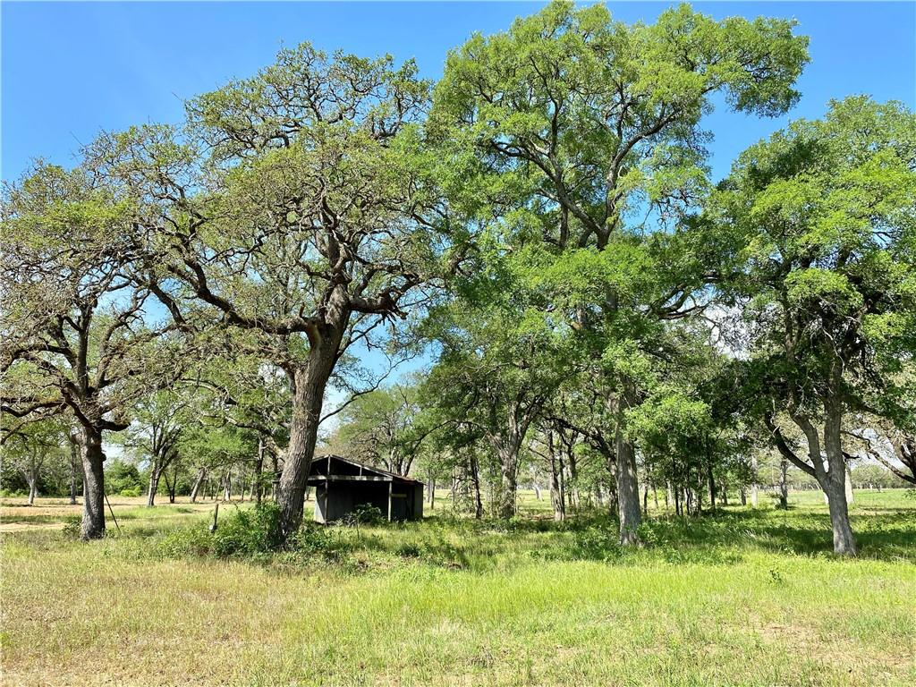 61.571 acres located in Bastrop County between Paige and Smithville. The property slopes to the rear with a gentle roll. You'll find lots of oak and cedar trees, a pond, a 22 acre hay field, and a seasonal creek at the back. Recently cleared, this tract is ready for your dream home or a getaway cabin. There are two oil pads on the property.