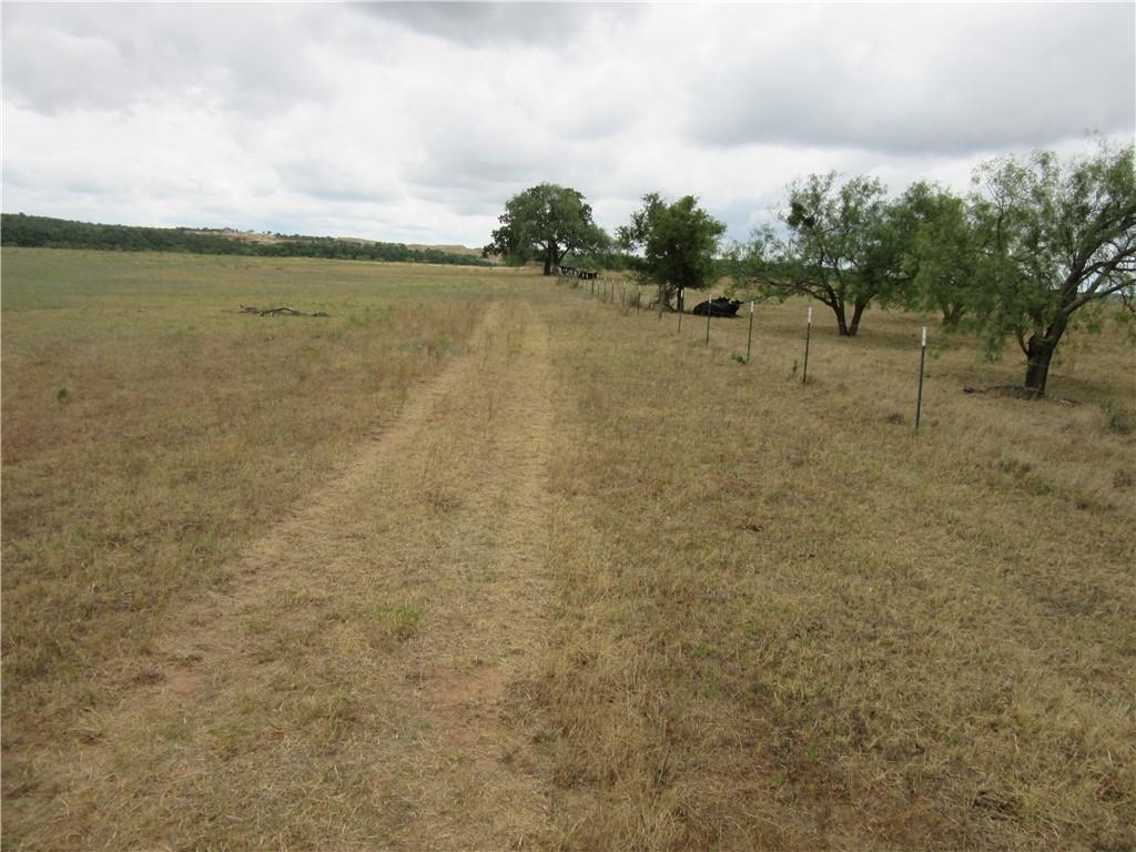 Rolling property adorned with an Ancient Oak Tree! 45+ Acres is perfect for your horses, cattle, or goats. Only 9 miles from San Saba! In the country but still handy stores nearby. This is where you can build your dream home! COME HOME TO THE COUNTRY!