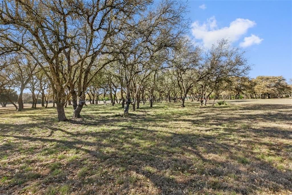 Better Hurry, this is the last home site available in the exclusive Las Maderas Estates. Las Maderas only has 8 lots in total and all are 7-8 acres. All on this dead end quite street just 1.5 miles from downtown Dripping Springs. You will be surrounded by multi-million dollar homes in this exclusive community and all other lots been built upon except Lot 1. If you are looking for seclusion, plus peace and quite to build that forever home, look no further. This is the LAST LOT. This 7.84 acre groomed lot has hundreds of beautiful Oak Trees with several open spaces to build your mansion, plus there is a 50'x 60' 3000 sqft insulated Barn with 3 large rollup doors that could easily store any size RV/Boat and plenty of room for work space. It was also designed to finish one side as an office, or guest quarters. This property also has a deep water well with high capacity pumping system that delivers clear and clean balanced PH water free from chemicals. It also has a 2500 gallon holding tank. City Water is also available with a tap. This won't last long. Dripping Springs school district is one of the best in the country, so don't hesitate or you could miss this once in a lifetime opportunity to own a piece of paradise. Completely fenced in with 2 entry gates and invisible dog fence for fido. Call now for a tour.