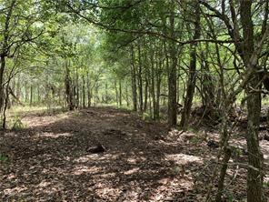 This 30+/- acre piece fo property sprawls across Gonzales and Fayette County lines. Believed to be present septic but is's NOT confirmed by the seller, buyer to verify. ** Legal Description of Properties Involved: Legal Descriptions: Fayette CAD - ABS A068 MCCOY J JR 1/4 LG, 10.14 ACRES, NO BLDGS OR M H: GONZALES CAD 549 J M MCCOY 9,90 ACRES; 7.50 ACRES; 323 JOHN H LIVEREGOOD 1.00 ACRES, & 1.00 ACRES**