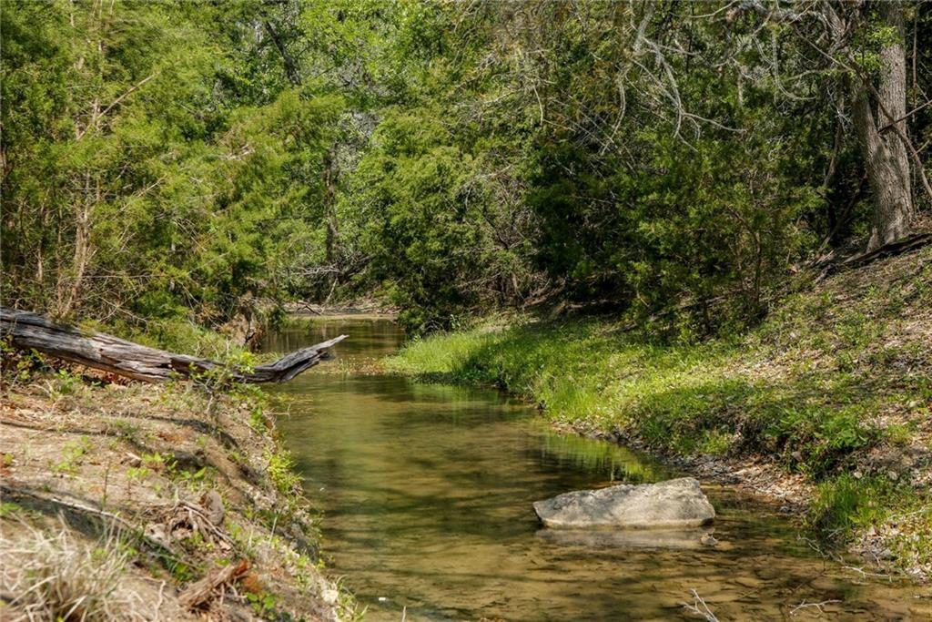 Bluff Springs Estates will have gated access off of RR 12 just 6.5 miles south of the intersection with Hwy 290. The development has sensible restrictions, multiple water features and legacy oaks. Across RR 12 is Storm Ranch which has been preserved so your views looking west won't change. The owners have done selective clearing to open up the view corridors and have uncovered multiple springs. The lots on the west side of the property have a strong wet weather creek and creek crossings are being installed. The east side of the development has long-distance views. All lots have multiple building spots and mature trees. Wildlife exempt for low taxes. Additional lots available, see agent for detail.