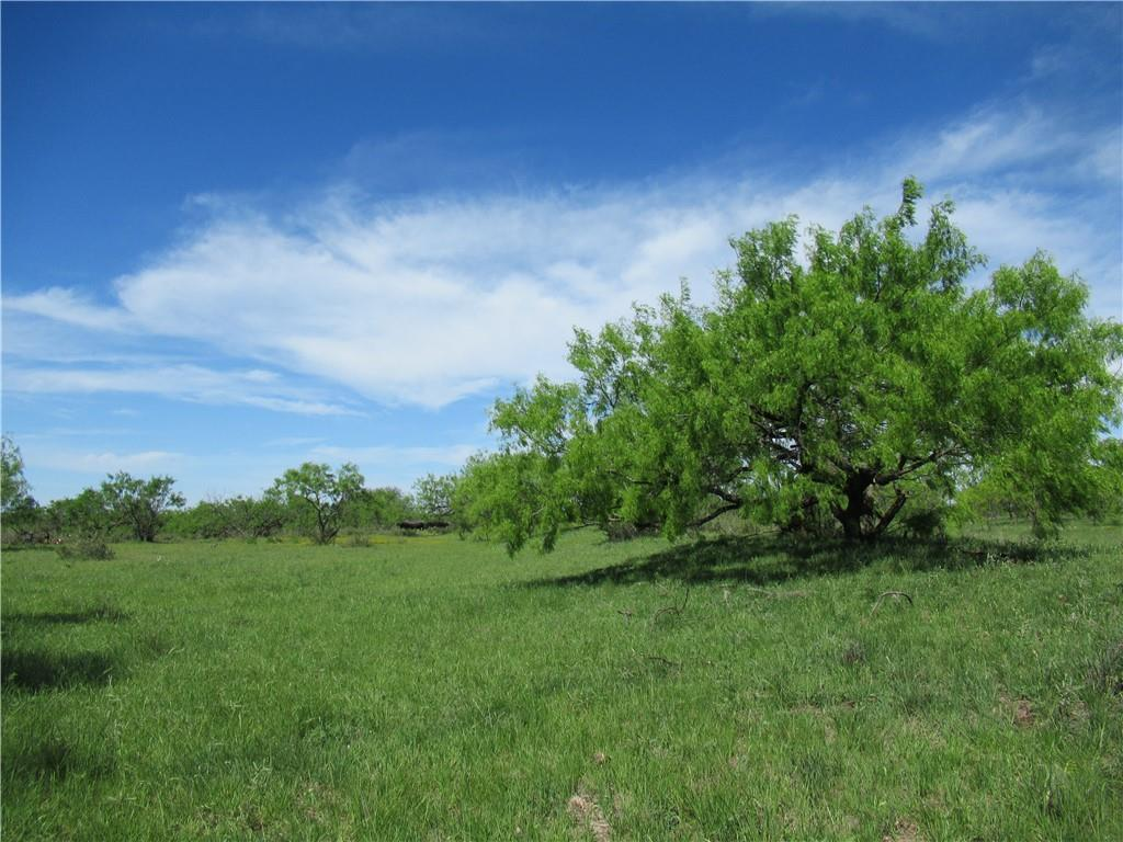TBD County Road 419 RD, McCulloch, Texas 76872, ,Land,For Sale,County Road 419,2756421
