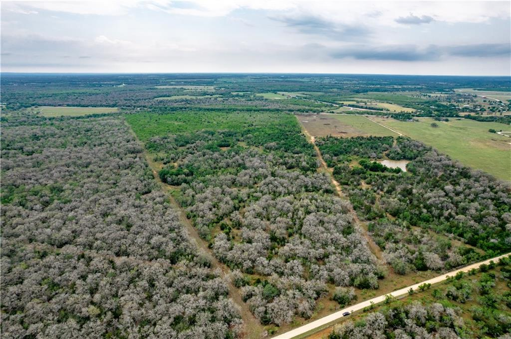 You've found best of all worlds with this 54 acre parcel of land. Conveniently located in Harwood makes for easy access to Interstate 10, being approximately 1 hour from San Antonio, 1 hour from Austin and 2 hours from Houston. Rectangular in shape, road frontage on the north and south boundaries including HWY 90 and CR 281. Beautiful mature trees, livestock tank and average condition fences make for multi-purpose use as a residential homesite, recreational property or grazing source. County water and co-op electricity readily available to the property.