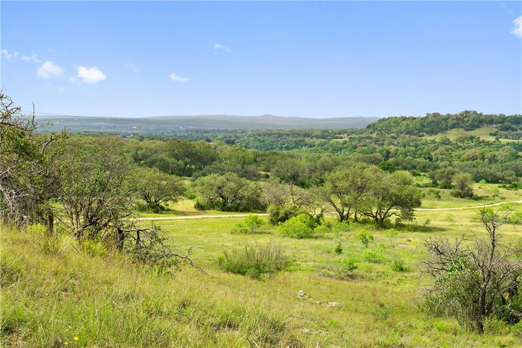 Gorgeous Hill Country Property in the huge Growth Corridor on Highway 71 in Spicewood.  This fantastic property is perfect if you keep all acreage as a perfect Gentleman's Ranch with 73 beautiful oak tree coveredacres - ag exemption in place or Subdivide and develop this into an incredible single family development.Enjoy both views and privacy with the ease of access fromHwy 71 frontage. Incredible location allows you to feel like you are away from it all and yet it is less than 15 miles to Hill Country Galleria. Composed of multiple parcels both restrictedand unrestricted for a wide variety of opportunities. Paleface Homesteads restrictions apply to 65 acres, back 8 acres are unrestricted. See documents for aerials, plat, restrictions and ag exemption information.