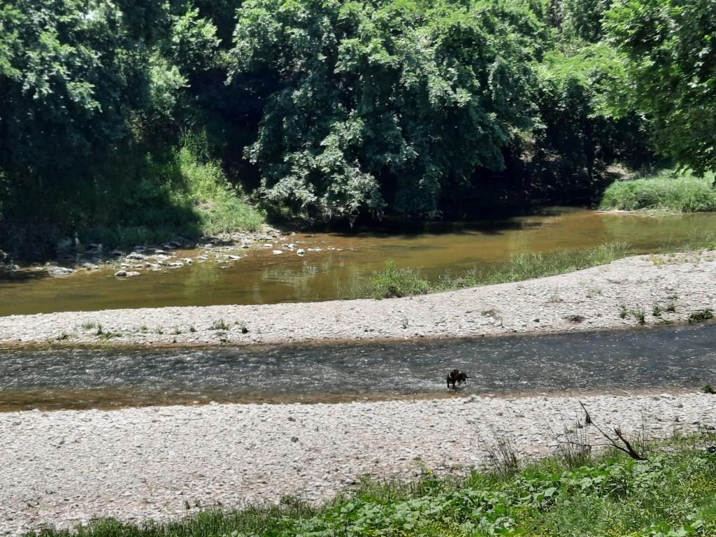 THIS 15.185 ACRER TRACT, HIDEN  JUST OUT SIDE KEMPNER CITY LIMITS. WITH OVER 400' OF FISHING,SWIMMING,TUBBING,KAYKAING ON THE RIVER. HUNT PIGS,WHITE TAIL AND AXIS DEER, AND DOVE. GREAT FAMILY GET A WAY OR COME BUILD YOUR DREAM HOME ON THIS HIDEN TREASURE.