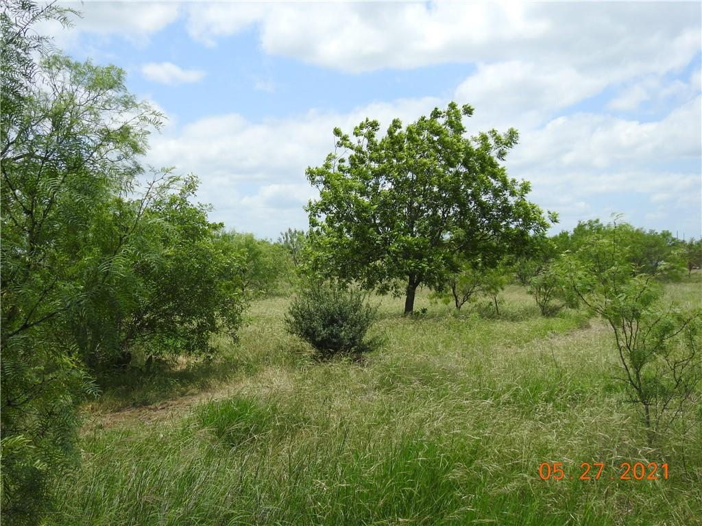 Hill Country views for miles!  20 acres with numerous mature mesquite trees and a few pecan trees.  Wildlife exemption in place based on 20 acres.  Build your dream home and enjoy peaceful country living at its best!  Only 15 minutes to Liberty Hill and approximately 10 minutes to Hwy 183.  Burnet ISD.  This property consists of two 10-acre tracts.  Reasonable Deed Restrictions. No mobile homes allowed, horses & other livestock ok but no swine unless FFA or 4-H.  PLEASE NOTE:  Owner is a licensed real estate agent in the State of Texas.