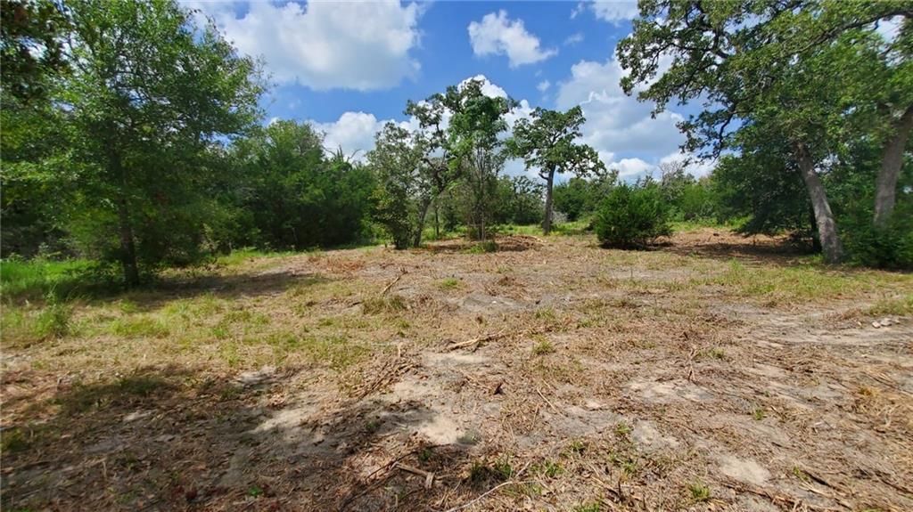 205 Deer Trail RD, Somerville, TX 77879