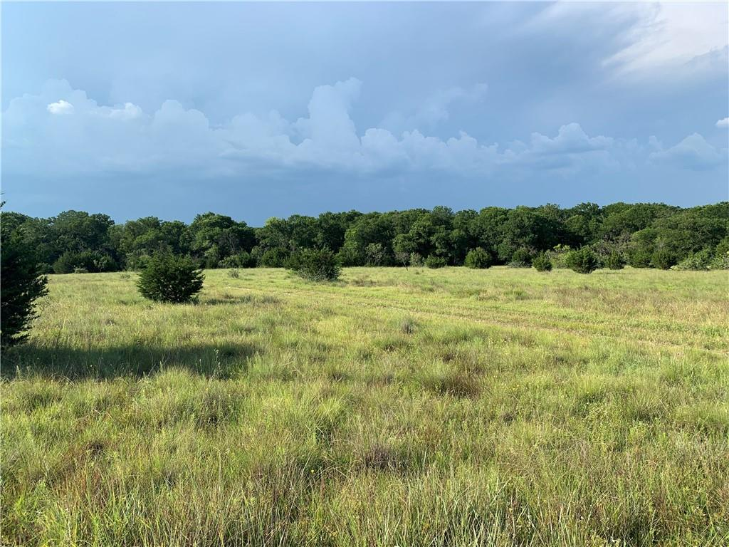 Beautiful, serene and laden with wildlife, this land is ready for you to claim it as your own piece of Texas. Build your dream home on 60+ acres, graze your cattle. or have it all and do both. Following decades of stewardship by its owners this property is ready for you to create your large executive estate. With Lampasas and Burnet only 10min either way you're close to it all but still retain that country living. Right off HWY 281 and inbetween CR 101 and 103 you can easily have multiple driveway access to your property and convient access to the main roads. Set and ready with AG Exemption, pond, well, and septic and electric approved, this magnificent property is just wating for you.  Excludes: Deer stands, RV