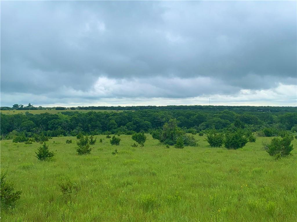 Beautiful, serene and laden with wildlife, this land is ready for you to claim it as your own piece of Texas. Build your dream home on 10.14 acres, graze your cattle. or have it all and do both. Following careful stewardship by its owners this property is ready for you to create your executive estate. With Lampasas and Burnet only 10min either way you're close to it all but still retain that country living. Right off HWY 281 and CR 101 you can easily have driveway access to your property and convenient access to the main roads. Set and ready with AG Exemption, and well, septic, and electric available this magnificent property is just waiting for you.  Excludes: Deer stands RV