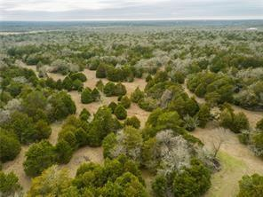 No Restrictions on 10.744 acres in Bastrop!!!  Build your dream home!  Endless possibilities!!  Electricity available.  Just needs a well and a septic.