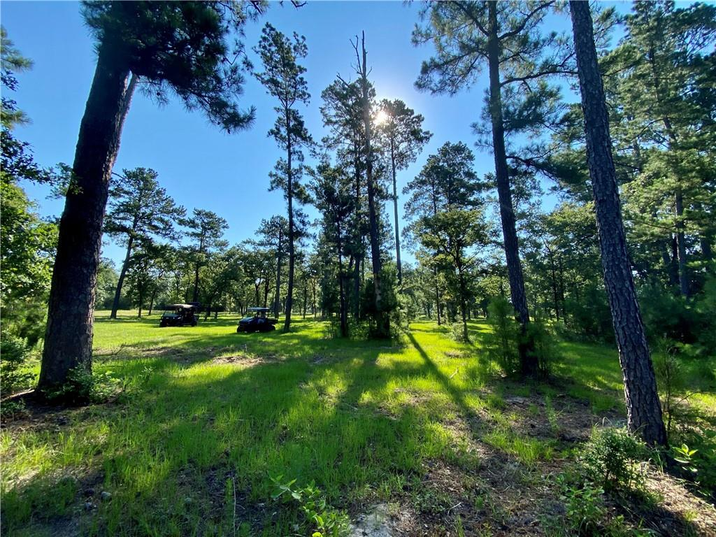 Looking for some beautiful country acreage that is secluded and private? This is the property if you are! 65 +/- breathtaking acreage, ALL AG EXEMPT! Perfect for a private ranch with numerous spots to build your custom home on would also make a the perfect get away for fishing, camping, hunting and so much more! Beautiful oaks and pines make this property an absolute one of a kind. HUGE stocked tank with panoramic views as well as a nice dry weather creek that flows well with a good rain! Conex building with electricity that could be for storage or even renovated for an air B&B! There is a well kept easement that leads to this stunning private property. Lots of potential and opportunity for this place. Pictures don't do it justice, it's a must see!
