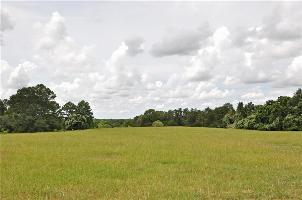 Approx. 10 acres to be surveyed out of larger tract. Beautiful property with large tank surrounded by incredible pine trees. Clusters of large oak trees, creek along back of property and ample flat land - plenty of options for home site. Old barn in fair condition. Low taxes - ag exempt. Electricity on property. Aqua Water nearby or can also dig well if preferred. 400+ feet of paved frontage. Fenced on front and back of property. Light restrictions to preserve property value: site built, barndominiums and newer mobile homes (2017+) welcome. Conveniently located 5 miles from downtown Smithville, 45 minutes from the Austin airport and 30 minutes from I-10, giving quick access to Houston and San Antonio. More land available in adjacent tracts at www.bartonscreekbend.com.