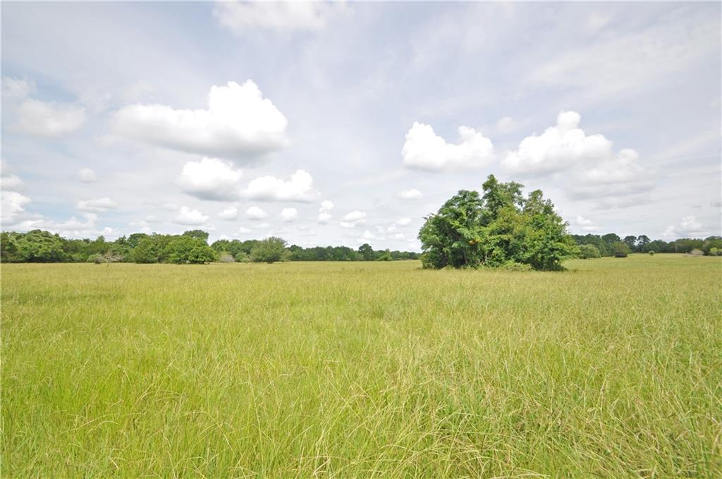 Approx. 50 acres to be surveyed out of larger tract. Clusters of large oak trees, creek along back of property and ample flat land for potential home sites. Access land behind the creek over bridge at back of property. Low taxes - ag exempt. Electricity on property. Aqua Water nearby or can also dig well if preferred. 1600+ feet of paved frontage. Light restrictions to preserve property value: site built, barndominiums and newer mobile homes (2017+) welcome. Conveniently located 5 miles from downtown Smithville, 45 minutes from the Austin airport and 30 minutes from I-10, giving quick access to Houston and San Antonio. More land available in adjacent tracts at www.bartonscreekbend.com.
