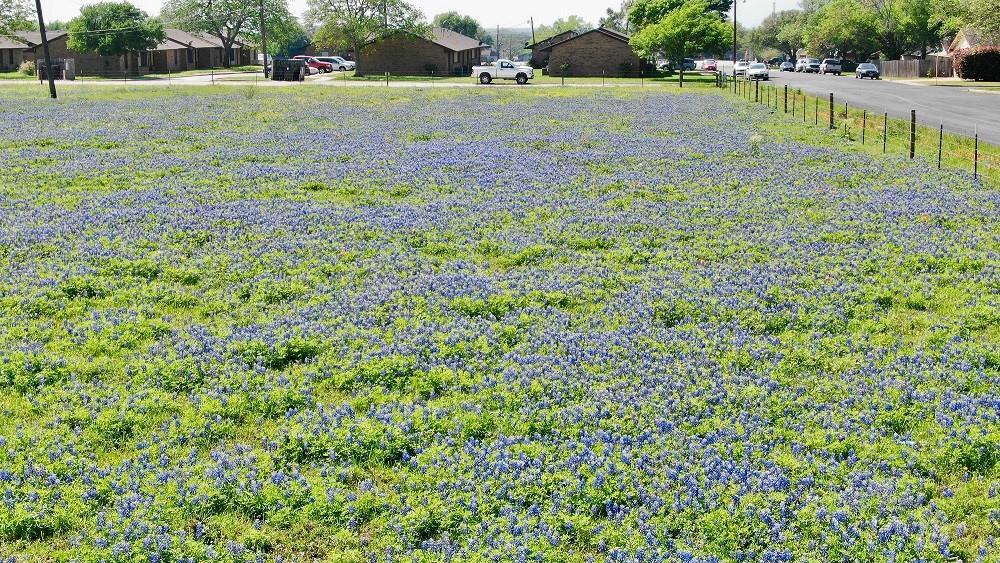 000 August ST, Schulenburg, TX 78956