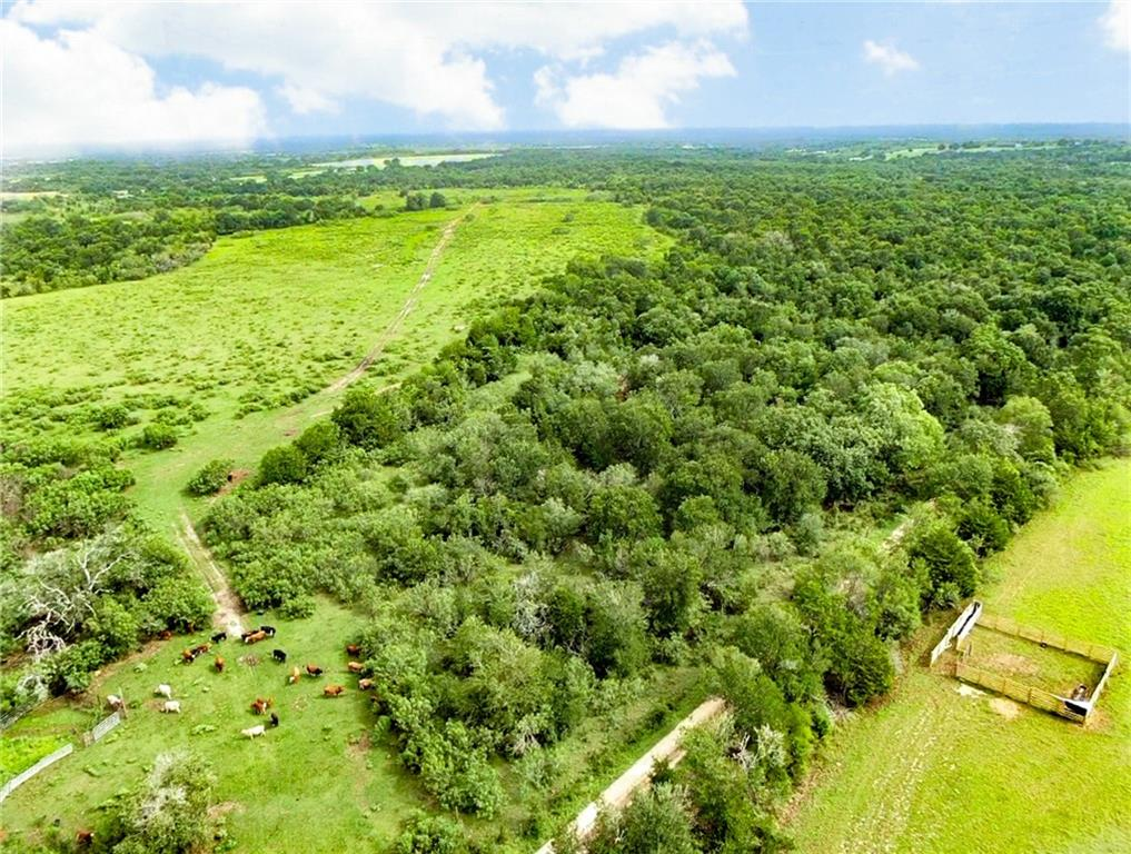 308 Acres Taylorsville RD, Red Rock, TX 78662