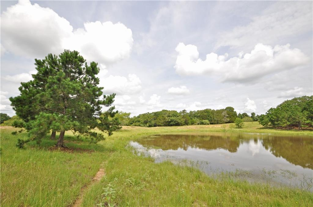 Beautiful 91 acres with endless possibilities - would make for incredible homestead or recreational property. Could also be subdivided - no restrictions. Conveniently located 5 miles from downtown Smithville, 45 minutes from the Austin airport and 30 minutes from I-10, giving quick access to Houston and San Antonio. Two large tanks surrounded by incredible pine trees. Clusters of large oak trees and creek along back of property. Ample cleared acreage for potential home sites. Incredible views throughout property. Private bridge across creek gives access to more cleared, buildable land at back of property. Ag exempt. Electricity on property. Aqua Water nearby or can also dig well if preferred. Well on property currently used to water cattle but no info on it. Partial flood plain along creek, but previous owners have never seen it flood. 2800+ feet of paved frontage. Two gated entrances with fully fenced perimeter.