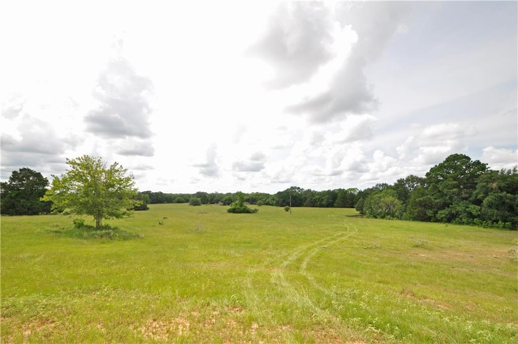 Approx. 60 acres to be surveyed out of larger tract. Clusters of large oak trees, creek along back of property and ample flat land for potential home sites. Gated entrance. Access land behind the creek over private bridge at back of property. Low taxes - ag exempt. Electricity on property. Aqua Water nearby or can also dig well if preferred. 1400+ feet of paved frontage. Light restrictions to preserve property value: site built, barndominiums and newer mobile homes (2017+) welcome. Conveniently located 5 miles from downtown Smithville, 45 minutes from the Austin airport and 30 minutes from I-10, giving quick access to Houston and San Antonio. More land available in adjacent tracts at www.bartonscreekbend.com.