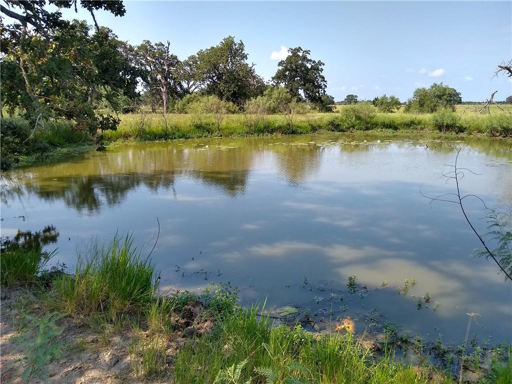 Enjoy the peace and quiet of the country on this great 22+ acre tract located on a quiet paved county road. This beautiful tract has native grasses, scattered large trees and a nice pond. All this provides a place for a great get-a-way or permanent residence in the country.