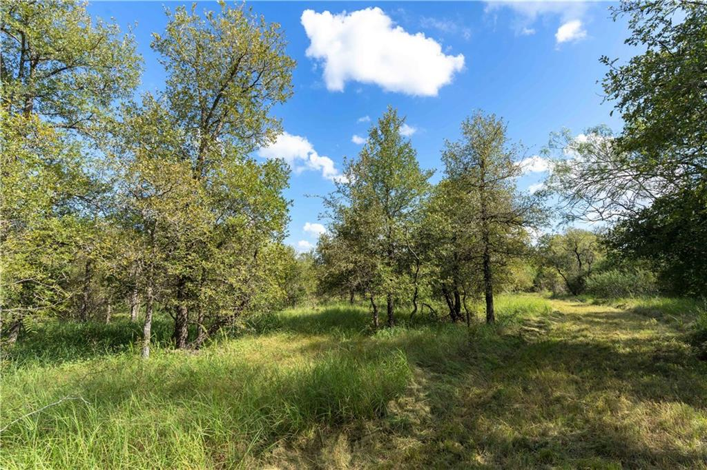 26.3 Acres with over 1,050 feet of Hwy 183 frontage just south of Lockhart. Outside of the Lockhart ETJ. Many possibilities here. Partially wooded (apprx 17 acres) and partially cleared (apprx 9 acres). Nice mixture of trees in the back. Fenced on 3 sides. Wet weather creek on the south edge of the property. Make an appointment to view this one soon! Approximately 35-40 min drive to ABIA or TESLA.