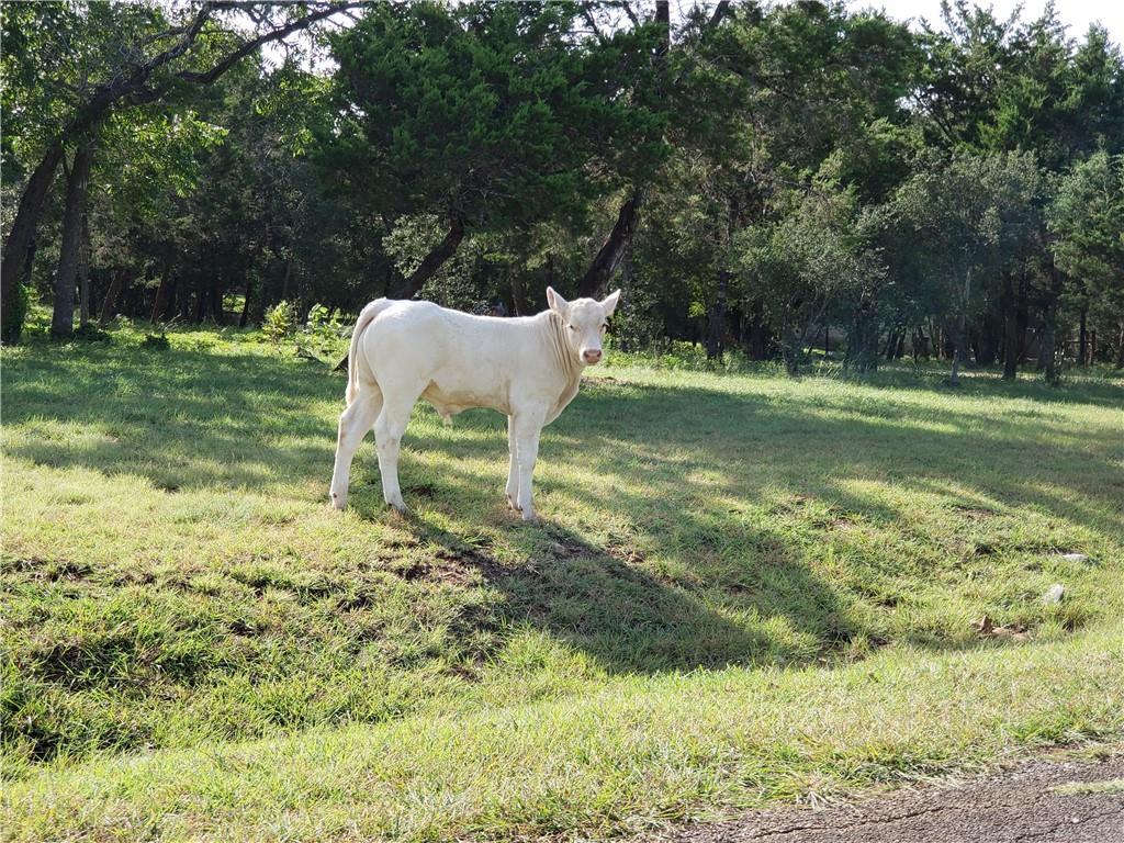 600 Winding TRL, Wimberley, TX 78676