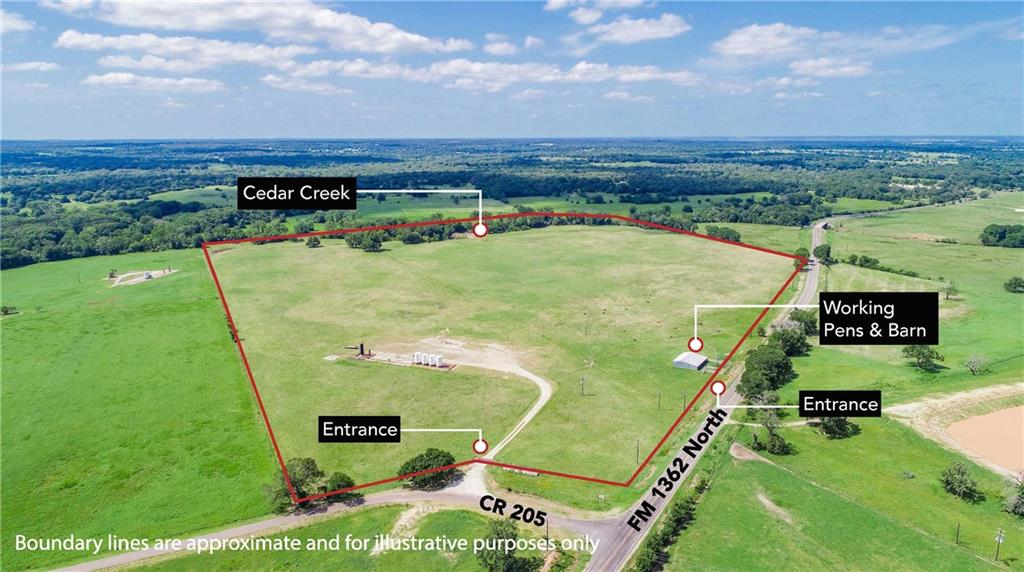 TBD (+/- 89 acres) County Road 205, Caldwell, TX 77836