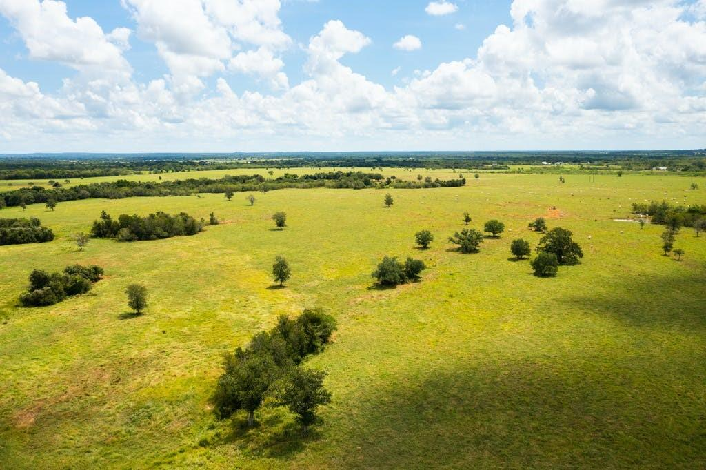 Highline Ranch,! One of a kind 1042.31 acre Ranch! Conveniently located just off IH 10 just out of Luling, Tx! This ranch offers a full range of possibilities from its current use as a cattle ranch, a hunters delight, to investors delight! Miles of road frontage! Fields of luscious Tifton and Coastal improved grasses! Cleared but plenty of beautiful foliage for livestock and hunting!  Beautiful oaks! New fences in 2017! Crossed fenced! 3 bedroom 2 bath brick home! 6 water wells, 10 ponds, wet weather creek,  large barn, pipe working pens and 3 hay barns. Whitetail deer, turkey, dove, hogs, ducks and other wildlife species throughout the ranch! There are cattle guards placed in each entrance of meadows cross fenced so you never have to open a gate! Outstanding accessibility! Just an hour from San Antonio and Austin, 2 hours to Houston and 3 hours to the coast! Minerals negotiable!