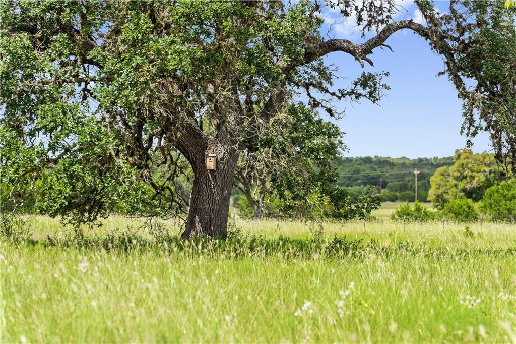 2000 Prairie View Trail RD, Driftwood, TX 78619