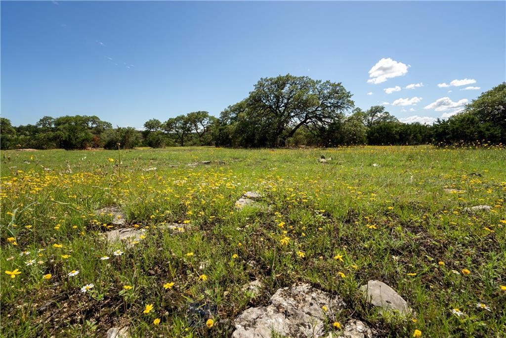 Lot 5 & 6 Bluff Springs Estates, Driftwood, TX 78619