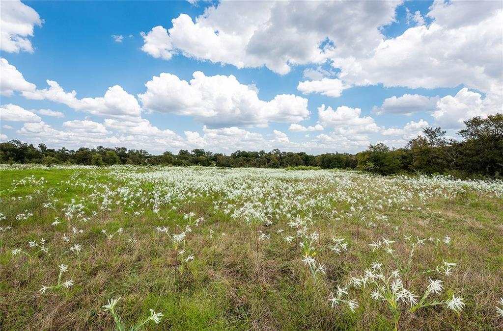 Seeking a quiet escape? This property offers 25+/- beautiful rolling acres, private and secluded with large mature hardwoods, views, good soil and a wet weather creek.  Perfect for a gentleman's ranch, home or small ranch.  Community water available through Manville MUD.
