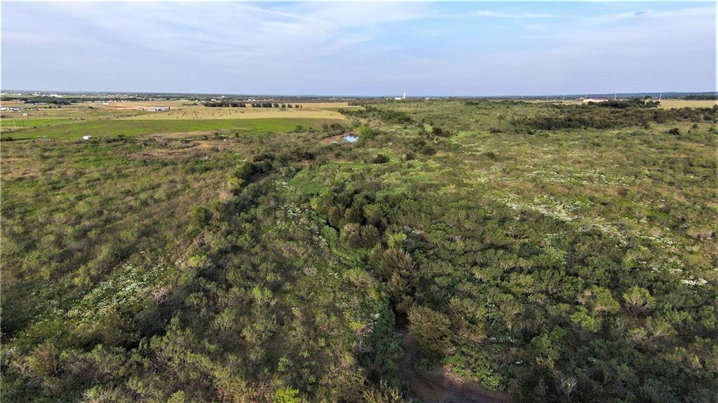 228.6 acres more or less good rolling land, no floodplain. Nice views. 3 ponds. Part of this property is in good coastal pastures and some of it is rough.  In the past there has been a water meter, septic and electricity on property.  Condition of the septic is unknown, but it was installed in 1999 according to the owner.  Can be sold with 17 acres (see map in attachments) that would give good access for development. Unrestricted and not in an ETJ  Driveway leading to the property is owned by this property and property widens when you pass the large pond.
