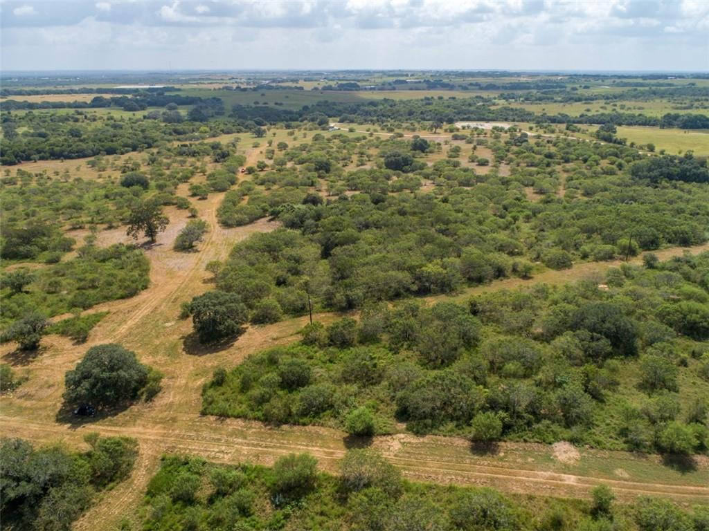 278 acres of excellent livestock and hunting land on the DeWitt-Gonzales County line just outside of Westhoff, TX. The unrestricted property is mostly square-shaped and approximately 40% wooded with 60% open space grassland with some scattered huisache. The native and improved grasses and huge oak, pecan, and elm trees along the seasonal creek ravines create a perfect habitat to enjoy the plentiful wildlife year-round. Two ponds provide water for livestock and a great place to hunt or fish. Approximately 8 acres at the entrance are located in DeWitt County with the remaining property in Gonzales County. There is an electric meter on the property along with a septic system previously used for a camper/RV. The ranch is perimeter fenced with a good set of wooden cattle pens and hay trap along Nolte-Boehl Rd. There are two gas pipeline easements that cross the property and two oil pads for gathering oil and gas. These pads are strategically located at the southwest and southeast corners so as not to affect the rest of the property. Raw land of this size is getting more and more difficult to find. Get your piece of the country! 76 adjacent acres on Hwy 87 are available, see attached maps.