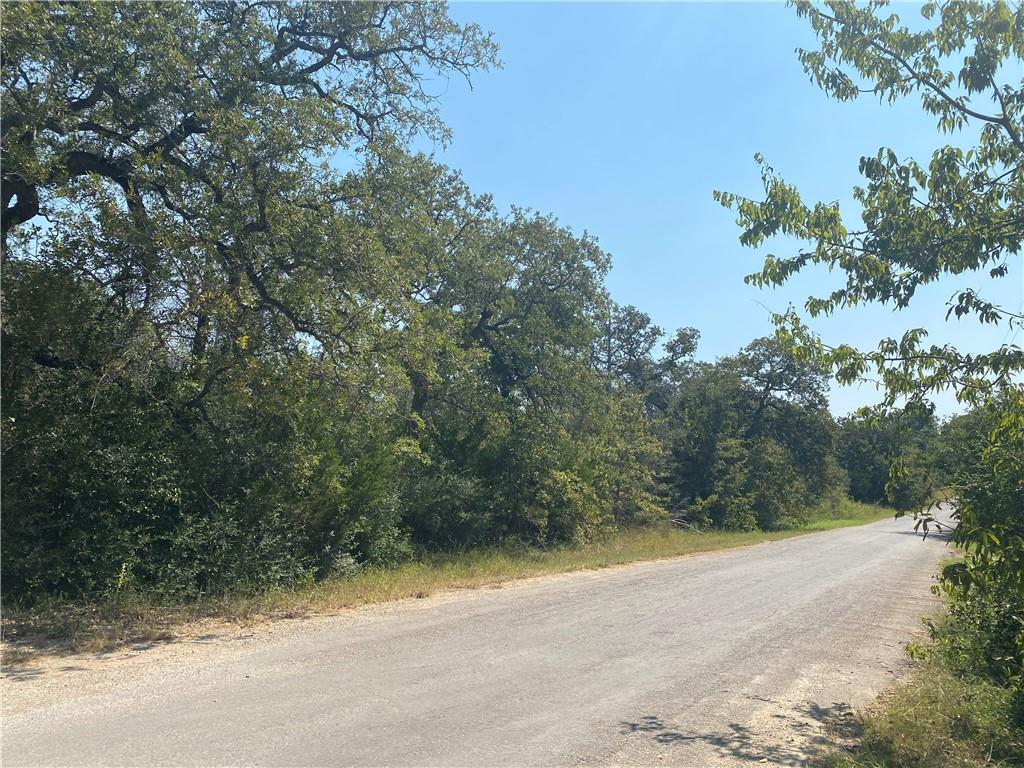 Beautiful acreage with lots of trees and 425 feet of road frontage! Pond at back corner of property. 30 minutes to Austin. Close to Elgin & Bastrop. Colorado River Public Boat Access nearby. Scenic & tranquil area. Create your own lifestyle ranch and get a tax ag exemption! Unrestricted property (neighboring 5 acre lots part of restricted community). City conveniences minutes away. Need Well & Septic. Bluebonnet Electric costs follow: $2,700 for 1st pole + $960 for meter loop + $2,700 per 100' of service to desired pole location.