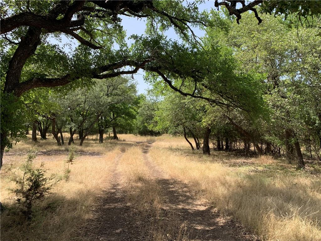 This beautiful, unrestricted, 85 acre ranch has excellent cover and an incredible deer population.  The terrain is rolling and there are hardwood trees throughout the property -- including live oak, post oak, Spanish oak and elm.  Located less than an hour from Austin, the property fronts on paved County Road 219 and is within a few minutes of Hwy 183 near the community of Briggs.   Buyers' agent must be identified on first contact and must accompany buyer on first showing