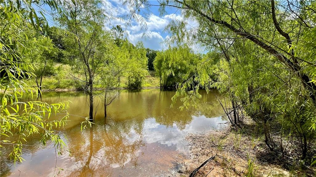 40 acres on the coveted FM 2095 in Southeastern Milam County, near the town of Gause. This 40 acres is a prime example of the rolling hills and diverse fauna that makes the Post Oak Savannah region of Texas so popular, as well as easy central access to Austin, Texas A&M, Houston and Dallas. Multiple elevation changes on this property gives the sense of hills and valleys, and provides multiple potential homesites. Recently mulched trails wind through the property creating a park like feel, excellent for walking or riding recreational vehicles and highlights the wide array of native trees including dogwoods, willows, cottonwoods, and various Oaks. Deep ravines and gullies provide excellent habitat for wildlife with great hunting opportunities throughout. The deepest and largest ravine winds it way along the eastern boundary ending in a duck pond, currently a habitat for wood ducks. Large acreage ranches in the area helps provide the peace and quiet, with the feel of a larger property. Over 1900 ft of frontage on FM 2095 provides direct paved access to property. Electric can be easily accessed along FM 2095 and aquifers below provide the potential for water via water well. Property is currently under wildlife exemption. Final acreage will be determined by survey. Some restrictions. Lots of work has gone into this property to highlight what it has to offer and to provide a place ready to go for future enjoyment.