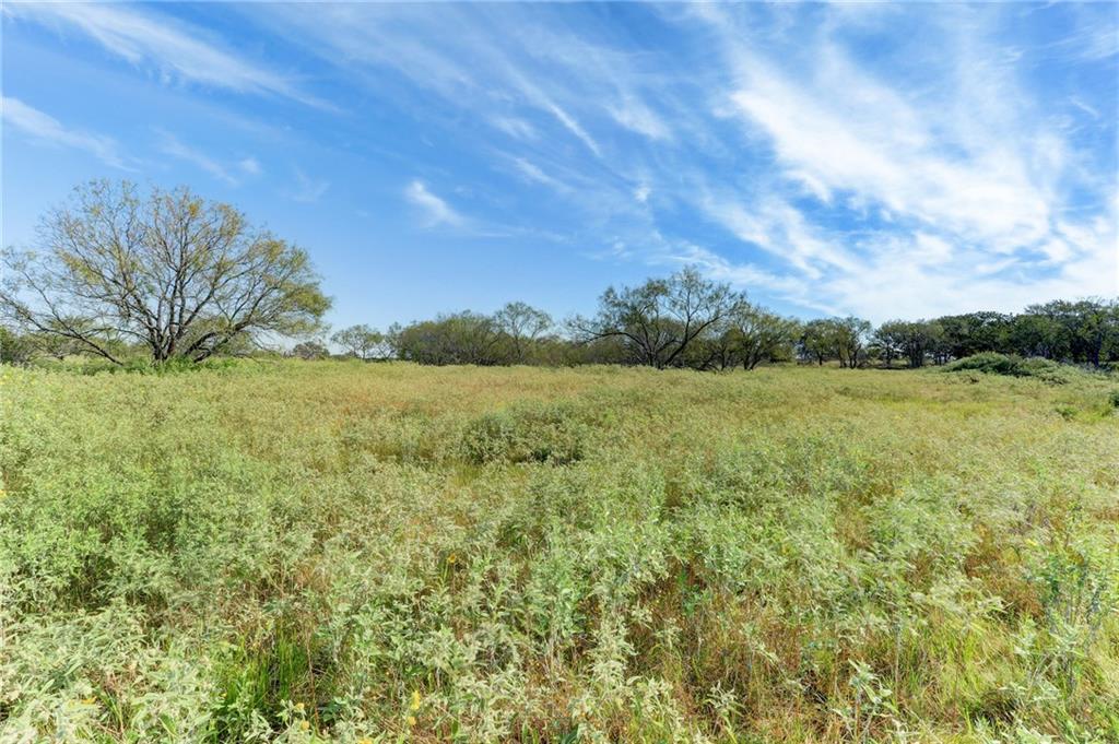 1832 Chalk RD, Harwood, TX 78632