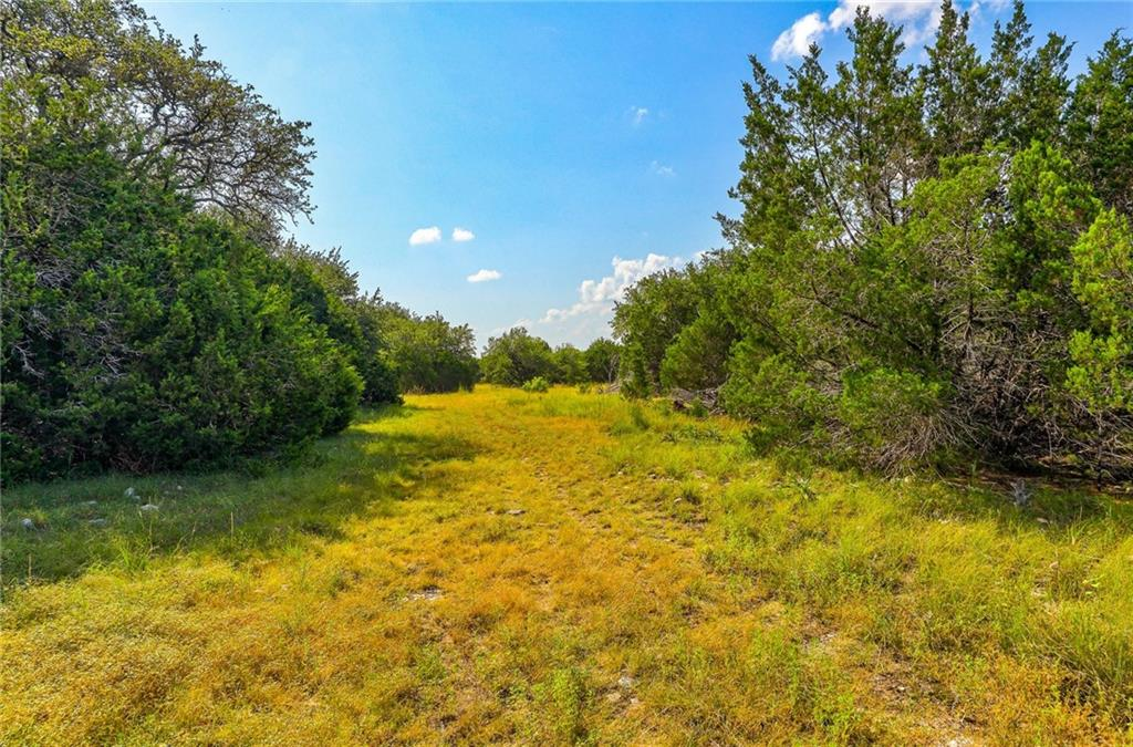 Own your own gorgeous piece of the country with this 10+ acre tract! This beautiful lot has several places to build your dream home, and enjoy the peace and quiet of the country. Bring your horses or other animals! Perfect property for an equestrian. You will still be less than an hour from Austin, yet minutes to Georgetown and Leander/Cedar Park for all your shopping, medical, and business needs. Additional tracts are available. AG Exempt. Owner/Agent.