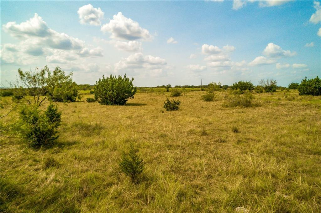 Own your own gorgeous piece of the country with this 10+ acre tract! This tract has several spots to build your dream home, and enjoy the peace and quiet of the country. Bring your horses or other animals! This property is PERFECT for a hobby farm or horse farm. You will still be less than an hour from Austin, yet minutes to Georgetown and Leander/Cedar Park for all your shopping, medical, and business needs. Liberty Hill Schools!