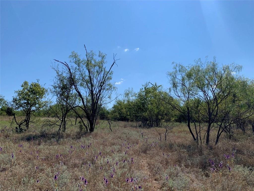 0 Greenwood RD, Comanche, TX 76442