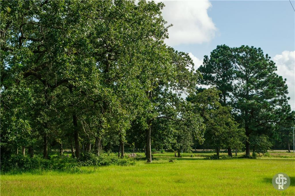 Located on FM 535 approximately 0.5 miles east of the town of Rosanky, Texas, sits this beautiful unimproved 5.56 acres ready for new ownership! Situated in Bastrop County, the property is located within manageable driving distance to Austin making it a great commuter property for a buyer looking to escape the hustle and bustle the city offers. Located in Smithville ISD, the property is triangular in shape and offers 900' of FM 535 frontage making for easy access. Covered in mature hardwood trees coupled with quality fencing on 3 sides, Bluebonnet electric and Aqua Water along road, and no floodplain, this blank canvas is a must see for discerning buyers looking to make a property their own!*Restrictions: Please see below  1) No noxious or offensive activity shall be carried on or maintained on any portion of the property. Nothing shall be done on the property which may become a nuisance to the adjoining property owners.  2) The property may not be used as a dumping ground or used to store rubbish , trash, or other waste materials.  3) The property shall not be used to store any inoperative vehicles unless they are stored inside a fully enclosed shop and the property may not be used as a junk yard, vehicle parts yard or to store or recycle used tires or appliances.  4) No hogs or swine shall be kept on the property other than a childs 4H or FFA project.  5) The property may not be used to operate any commercial businesses; included but not limited to a storage facility/unit, gas station, commercial dog kennel, shooting range or firing range of any type.  6) No mobile homes nor pre-manufactured homes may be placed on the property. 7) No recreational vehicles, travel trailers, campers or outbuilding ( except for guest house or mother-in-law suites) may be used to live in for any period of time. The property may not be used as a travel trailer park.