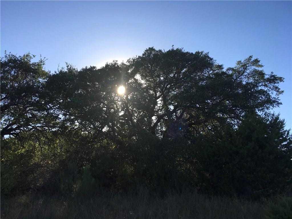 92 +/- Beautiful Acres Close To Florence, Killeen And Salado.  Property Is Being Sold Out Of 200 Acres That Has Been In The Family Since The 1950's.  Tons Of Oak And Cedar Trees, 2 Stock Tanks And Lots And Lots Of Deer.Restrictions: Yes