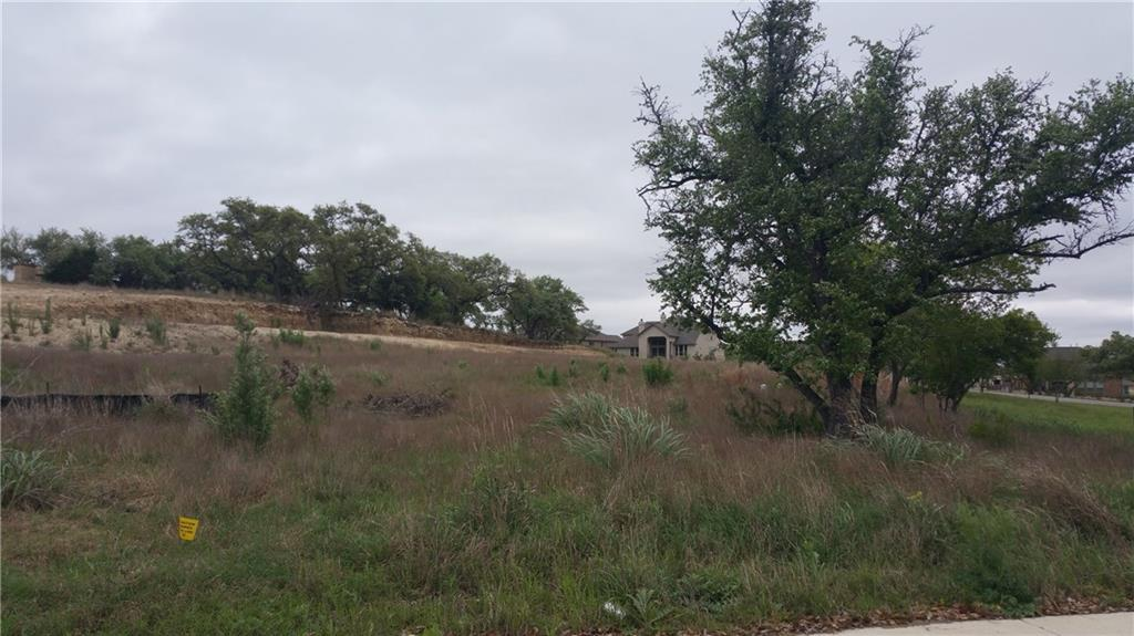 201 Evelyn CT, Hays, Texas 78620, ,Land,For Sale,Evelyn,5494552