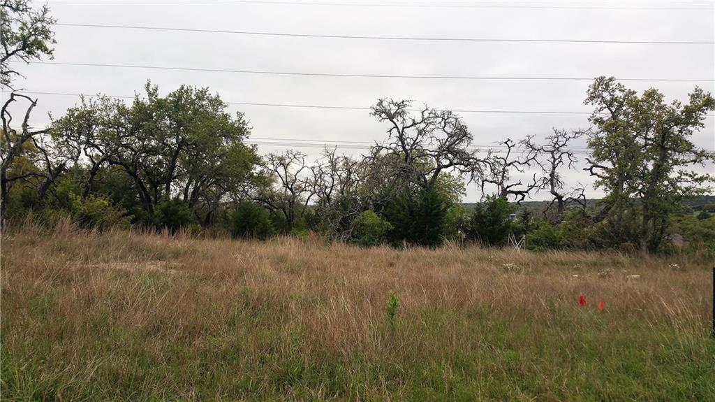 110 Capstone CT, Hays, Texas 78620, ,Land,For Sale,Capstone,5081803