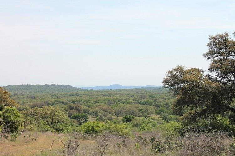 This ranch is located in the heart of whitetail deer country just south of Llano. Unbelievable views of Enchanted Rock & the surrounding Hill Country. A wet weather creek bisects the ranch creating beautiful rolling landscape throughout. Abundant oaks & other assorted hardwoods provide excellent cover for wild game. Fenced & has a water well. Located on CR 312  15 minutes from Llano & 1 1/2hrs from Austin.
