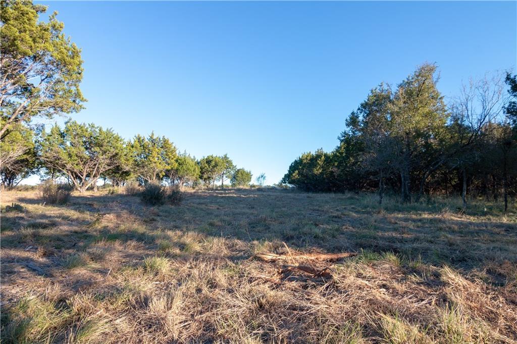 Lot 46 Park View DR, Burnet, Texas 78654, ,Land,For Sale,Park View,9297553