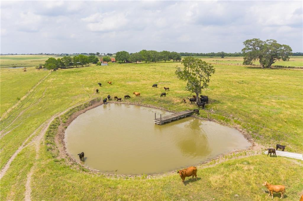 11.4 mi from Schulenburg, 6 mi from Flatonia on paved rd. Approx 1,750 FT rd frontage, elevation drops for nice views & awesome evening sunsets. Land is rolling w/many country side views.  100% fenced, cross fenced making 6 diff pastures, 3 ponds, electric near-by. Several home sites overlooking twin sister ponds for views of those gorgeous TX sunsets.