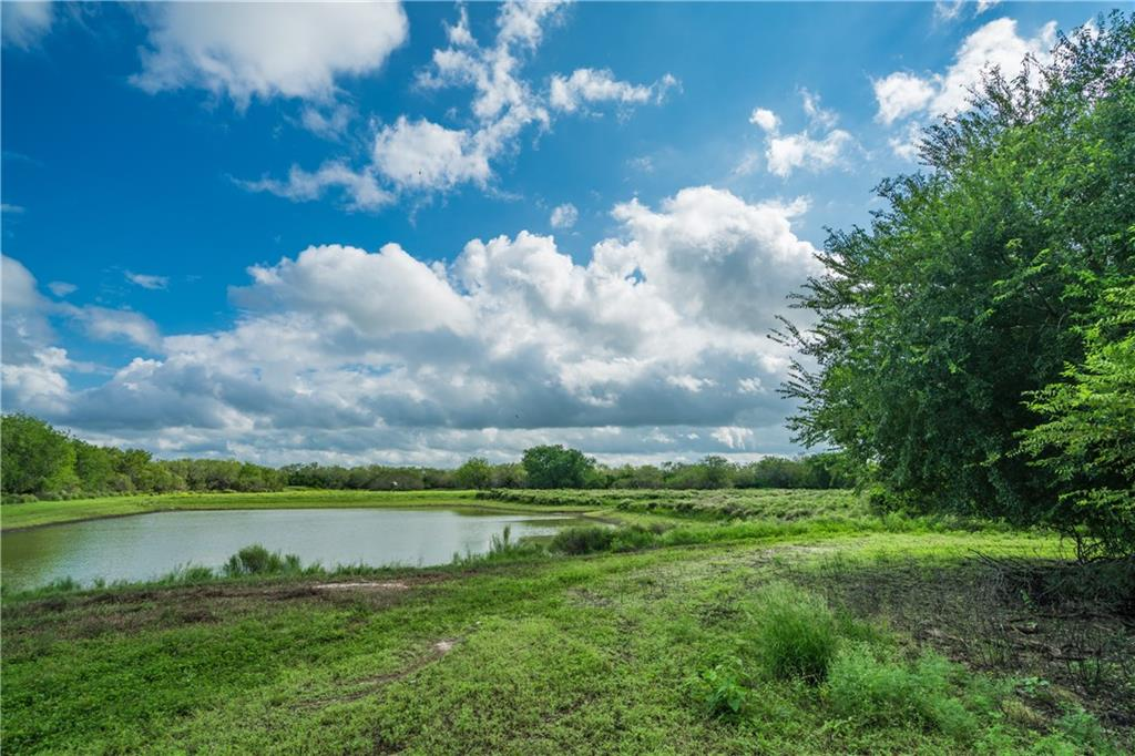 This turn-key MLD Level 3 hunting property boasts thick brush & abundant water, perfect for attracting trophy whitetail, turkey, quail & dove! 1,331 ac w/all-weather roads, 20+ blinds & feeders, 8 earthen tanks supplemented by 7 solar wells, partial high-fencing. 3BR/2BA home & 1BR/1BA cabin sleeps 14+! 3,600sf+- metal barn, walk-in cooler, RO system, hot tub, covered patio w/fire pit & grill. Many addl items (vehicles & machinery) included. Little to no production nearby, 4100+/-sqft paved rd frontage.Guest Accommodations: Yes Comm. Features: Health Club Discount