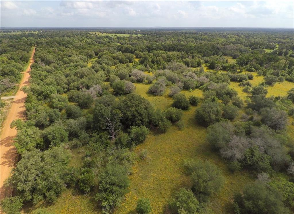 Beautiful oaks! Nice sandy loam, soil survey attached in mls. Only minutes to Smithville and 40 mins to ABIA. Nice road frontage! Neighbor runs cattle on it for ag value. There are nice areas of open pasture with beautiful wildflowers in Spring and soaring oak trees! 24.16 acres was surveyed out of 38.65 acres. Drone photos are of all 38 acres not just this tract. Sellers retain the entire Mineral rights/estate 100%