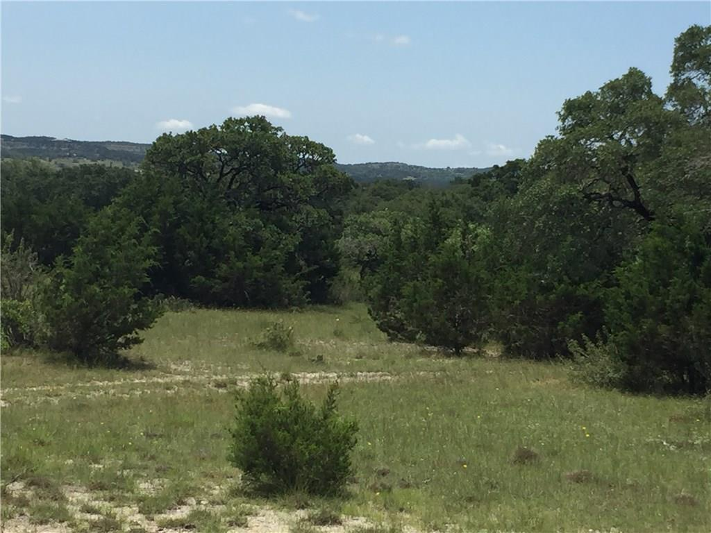 Available (2) Beautiful undeveloped Tracts 38.67 acs and the other at 40 acs. totaling 78.67 acres, sold separately see mls#5744569. Tracts A & B are Located in a desired area of the Dripping Springs Hill Country within the DSISD. This acreage boasts native grasses, mature oak trees, incredible views and offers a quiet and serene environment for your family retreat.  This unrestricted property allows for a multitude of uses. Abundance of wildlife and is currently under a Ag. Tax status.Restrictions: Yes