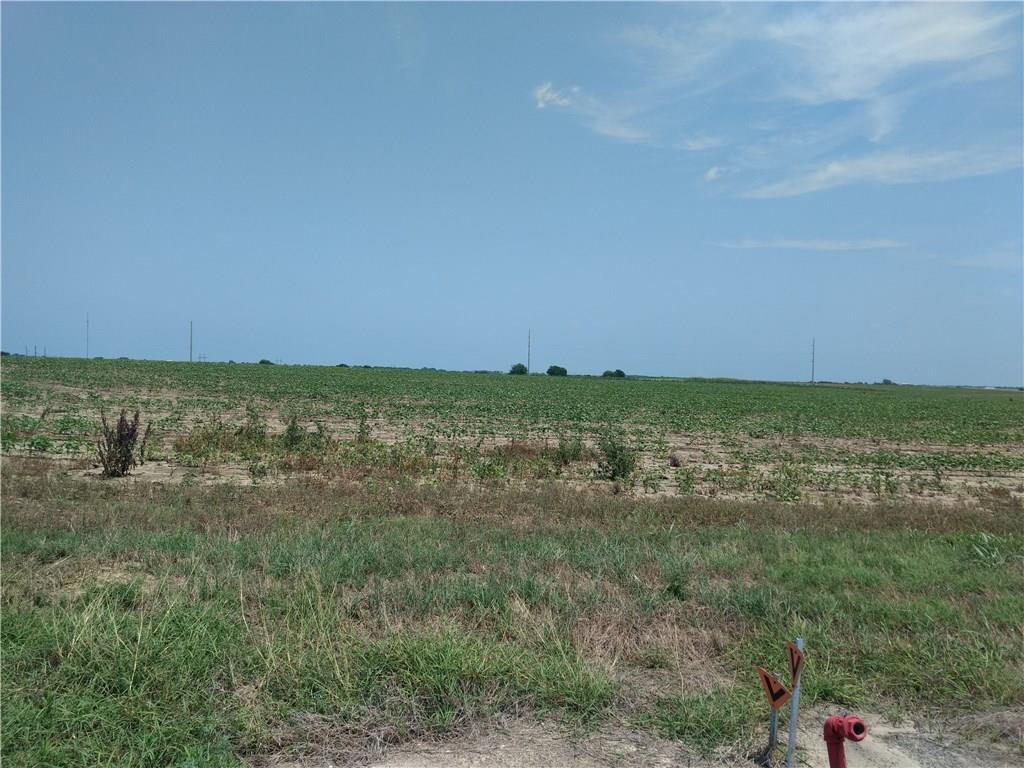 20.8 Ag exempt property, Located near Elgin and Coupland. Property has frontage on 2 sides.   This was in a larger tract at one time. Lots of potential.  Basic seller restrictions.  Live in the country and raise crops. Lots of potential.FEMA - Unknown Restrictions: Yes