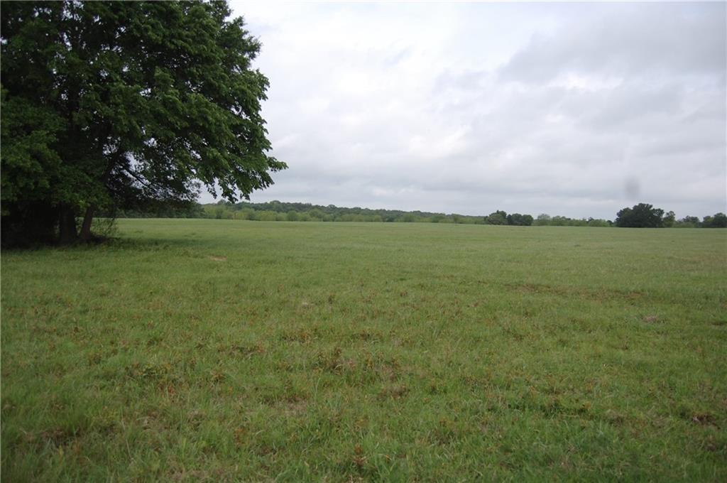 18+/- gently rolling acres divided out of large ranch with beautiful coastal grasses, pond, scattered trees, and cattle pens on paved CR frontage. This is a beautifully maintained property. There are several amazing building sites on this tract.  This property is part of a larger tract and has protective deed restrictions.  Bring your cattle, horses, and atv's.  Close commute to north Austin/RR/Georgetown.  This is a must see property!Restrictions: Yes